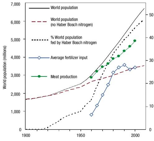 In questo grafico da Erisman (2008) è possibile apprezzare il ruolo del processo Haber Bosch sulla crescita della popolazione mondiale. La linea rossa tratteggiata indica la crescita della popolazione in assenza del processo Haber-Bosch, mentre quella nera continua indica la crescita della popolazione effettiva.