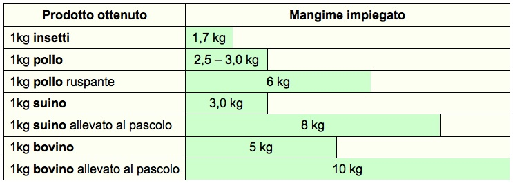 Quanto mangime è necessario per accrescere di 1 kg la massa corporea